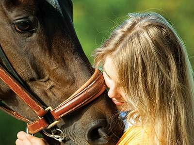 equine therapy and other treatments